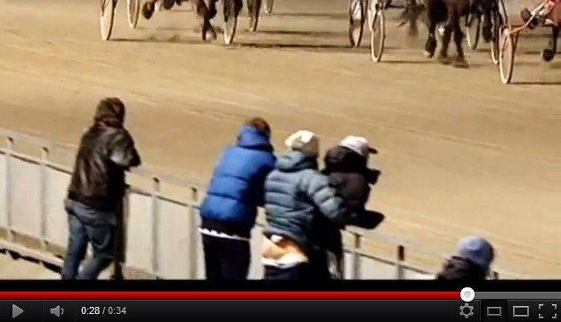 'Stallion' caught with pants down at Norway racetrack