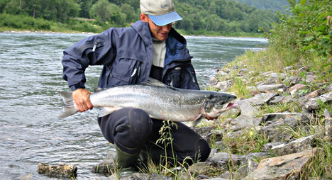 Norway limits 'low stock' salmon fishing