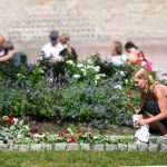 One woman lays a rose at the memorial outside the Oslo Cathedral, two years after the terrorist attacks on July 22nd, 2011 in Oslo and on Utøya.Photo: Heiko Junge / NTB Scanpix