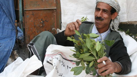 Man gets 18 months in jail for khat smuggling