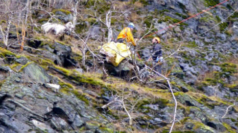 GALLERY: Goat saved by dare-devil climbers