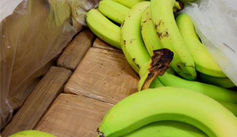 Giant cocaine haul found stashed in banana boxes