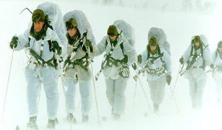 Arctic Norway 'too cold' for British troops