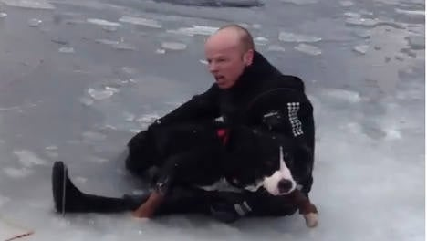 VIDEO: Dog rescued from ice in daring operation