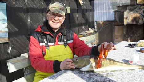 Norway man finds adult toy in cod's stomach