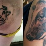 Norway farmer tattoos cow on right buttock