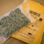 Cannabis confiscation up threefold in Norway