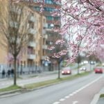 Warmer weather finally coming to Norway as May begins