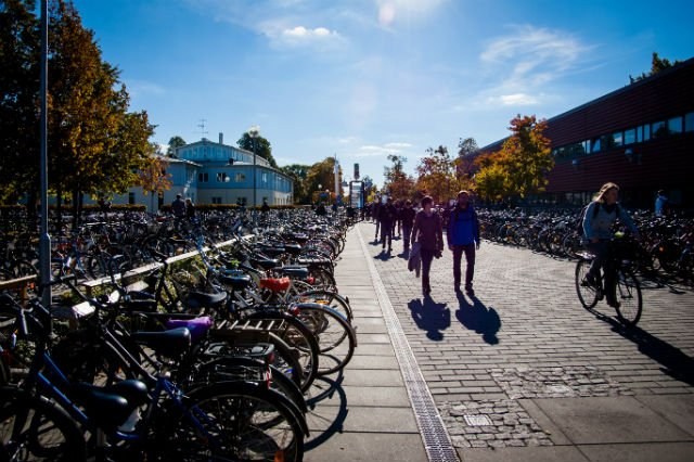 Is this the best Swedish university for international master's students?