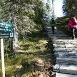 Sherpas build hundreds of kilometres of paths in Norway's wilds