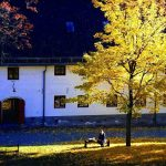 Best places to photograph autumn colours in Oslo