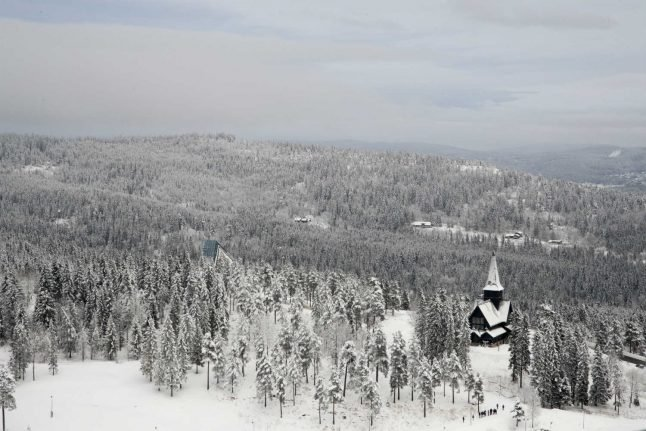 Heavy snow and snapping trees concern Norwegian forest owners