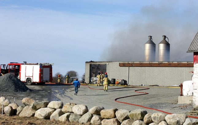 20,000 chickens killed in fire at Norwegian poultry farm