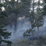 Norway's emergency services battle with forest fires