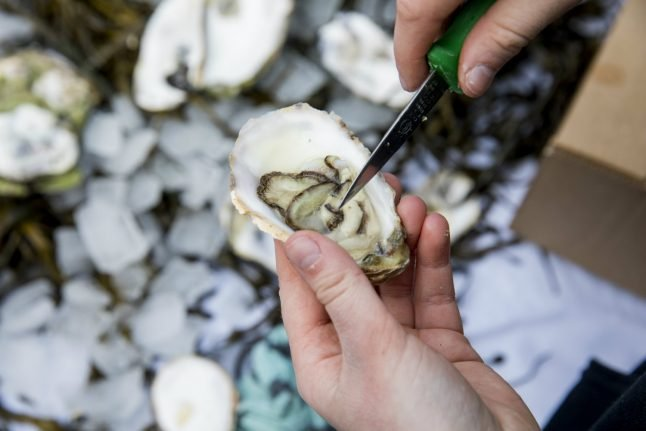 Norwegians warned not to eat oysters after bacteria outbreak