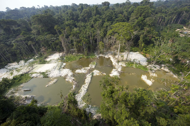 Why Norway is halting its donations to forest protection in Brazil
