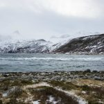 'Scary' depopulation of northern region of Norway hits record high