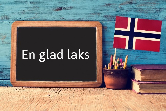 Norwegian expression of the day: En glad laks