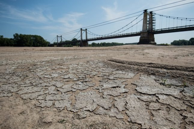 Climate crisis: 2019 was Europe's hottest year in history, EU says