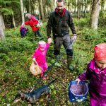 How to pick mushrooms in Norway like you've been doing it all your life