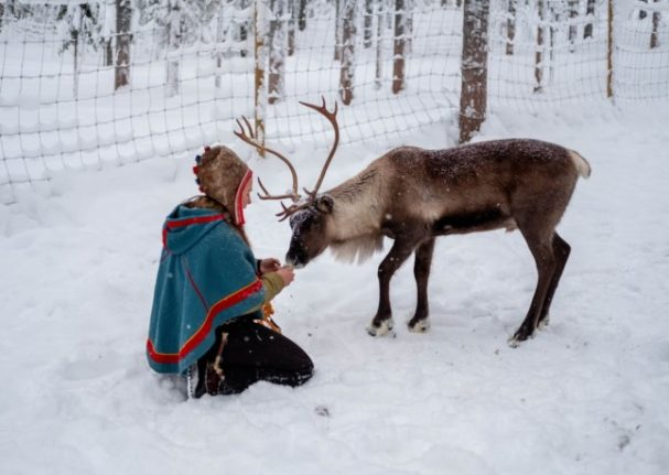 The court ruled that the wind park was harming the sami people. Pictured is a Sami woman and a reindeer.